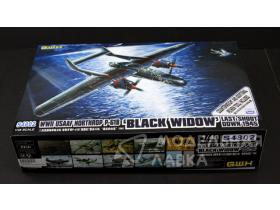WWII US AAF Northrop P-61B Last Shoot Down 1945 Limited