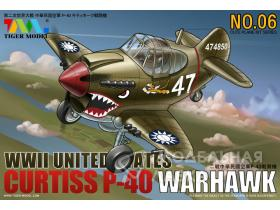 Curtiss P-40 Warhawk Fighter