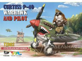 Curtiss P-40 Warhawk Fighter And Pilot