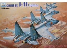Chinese J-11 fighter